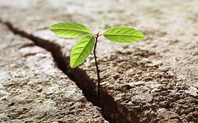 メンタルな強さを向上させ、人生のハードルをクリアするには